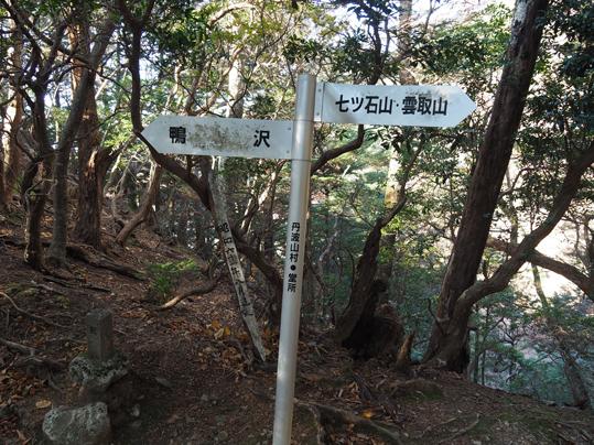 OMD50015.JPG